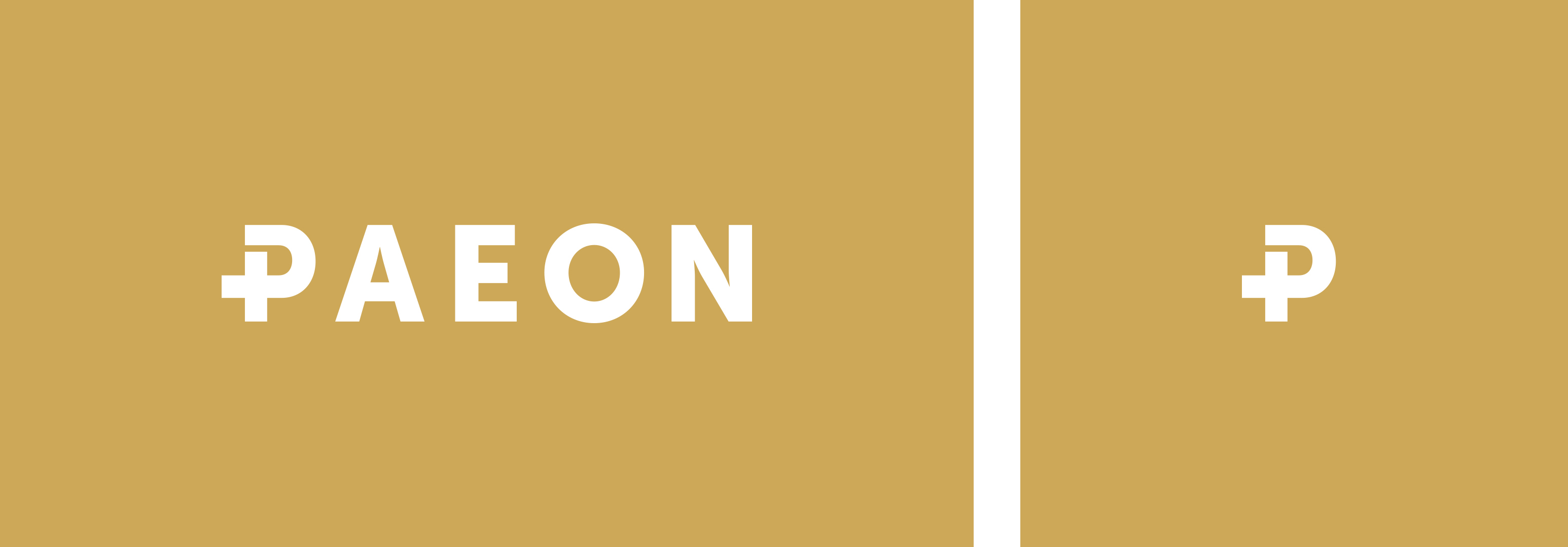 paeon_logo_favicon
